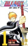 Bleach_cover_01