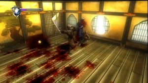 Ninja Gaiden Sigma - Bloody ninja fight