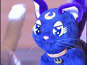 Live Action Sailor Moon - Luna the plushie