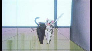 Sailor Moon - Luna and Artemis